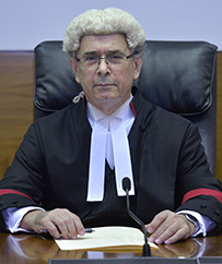 The Honourable Justice Stephen Southwood
